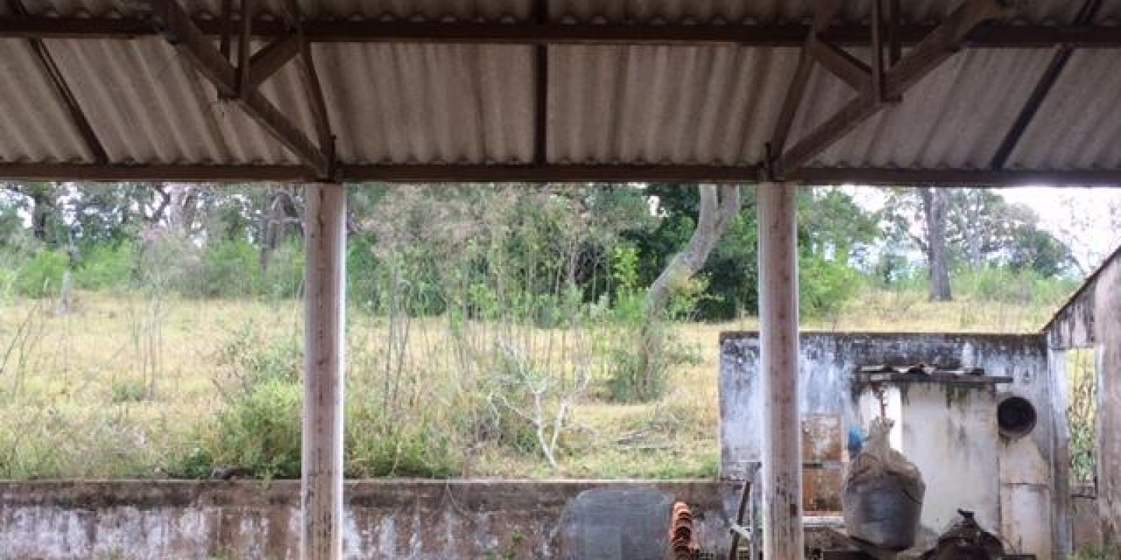 Fazenda 34 Alqueires em Avaré SP - Foto 14 de 60