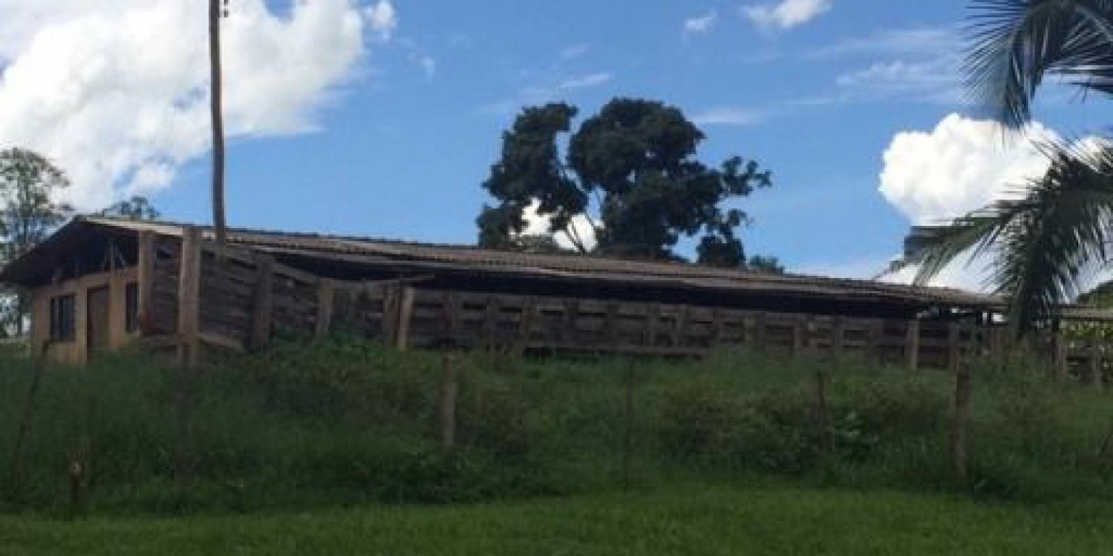 Sítio a Venda em Manduri SP - Foto 9 de 20