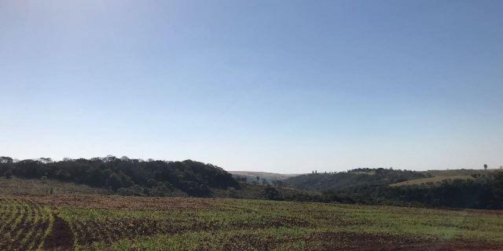 Fazenda de 40 Alqueires, Município de Sarutaiá Sp - Foto 1 de 20