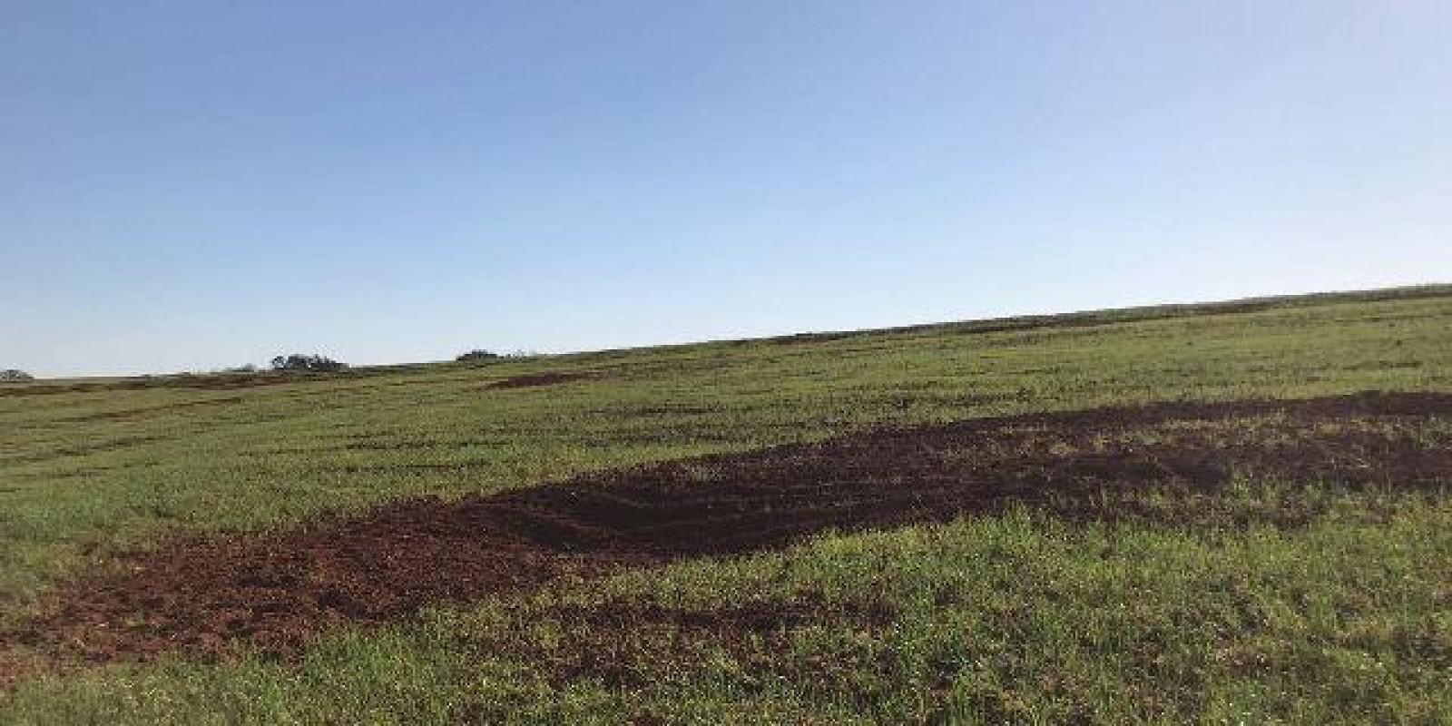 Fazenda de 40 Alqueires, Município de Sarutaiá Sp - Foto 14 de 20