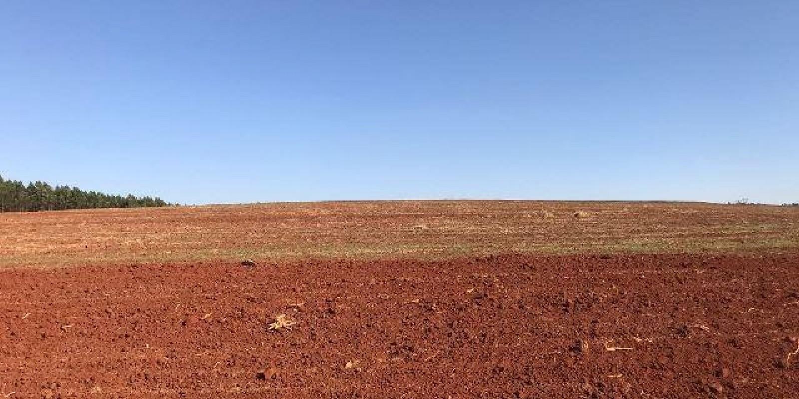 Fazenda de 40 Alqueires, Município de Sarutaiá Sp - Foto 16 de 20