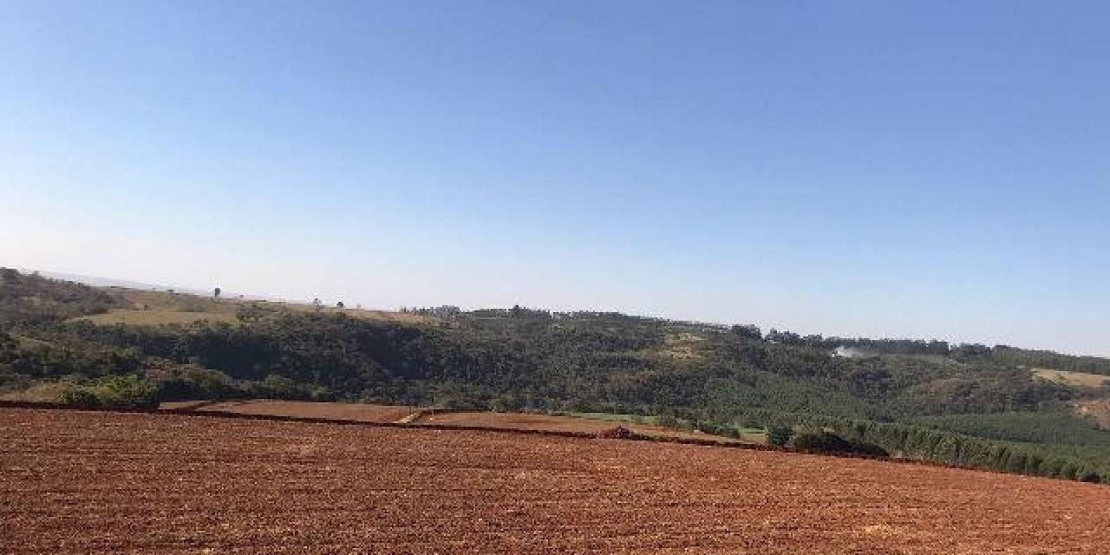 Fazenda de 40 Alqueires, Município de Sarutaiá Sp - Foto 17 de 20
