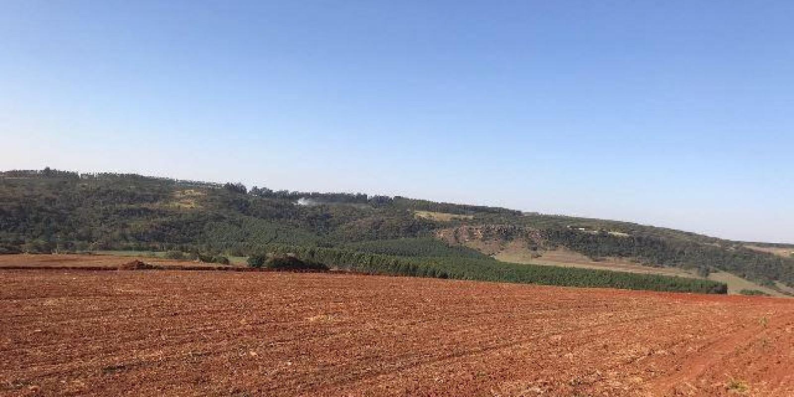 Fazenda de 40 Alqueires, Município de Sarutaiá Sp - Foto 18 de 20