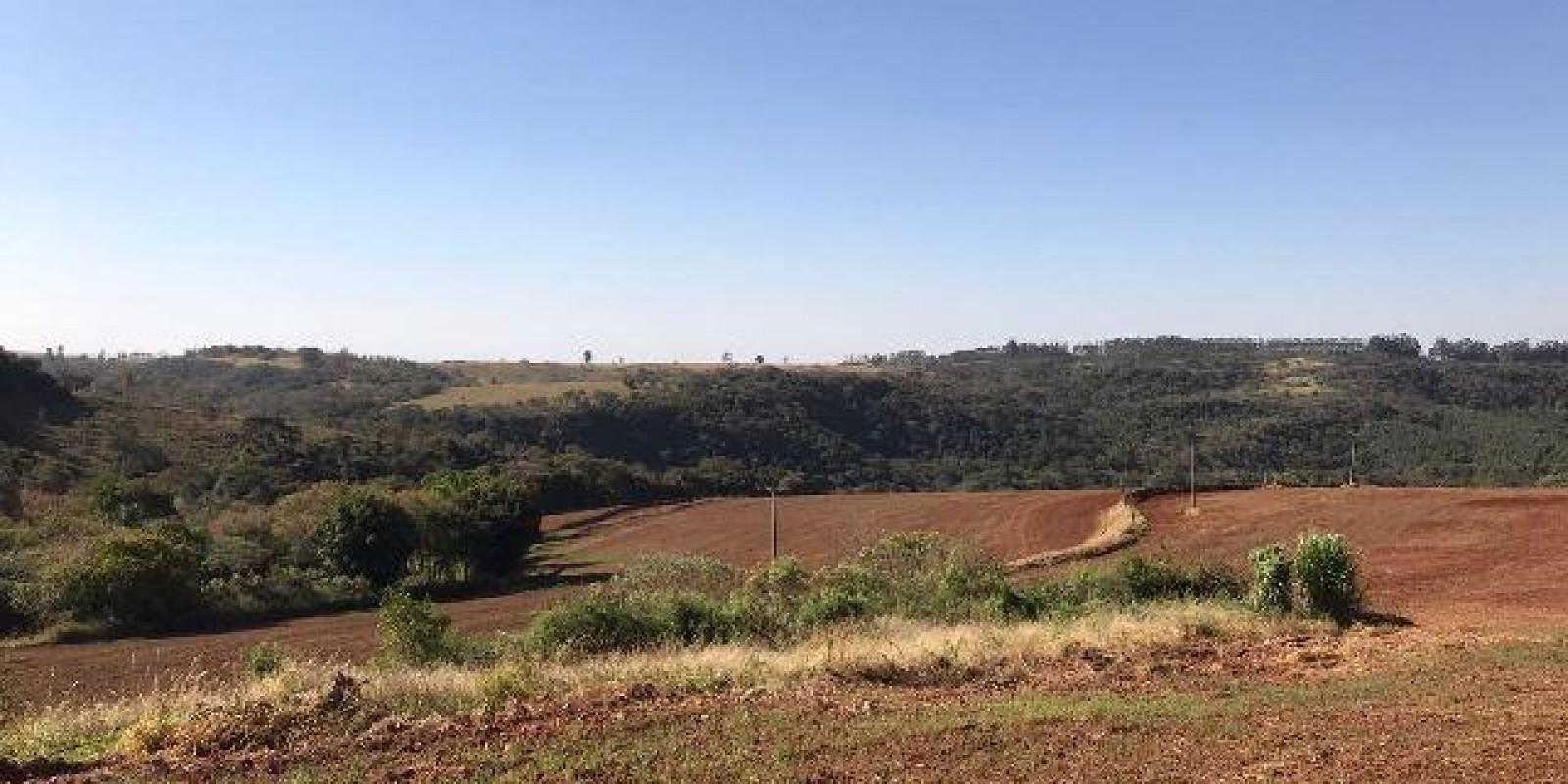 Fazenda de 40 Alqueires, Município de Sarutaiá Sp - Foto 2 de 20