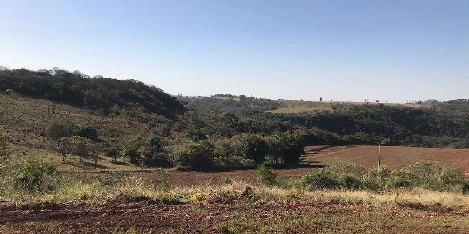 Fazenda de 40 Alqueires, Município de Sarutaiá Sp - Foto 20 de 20