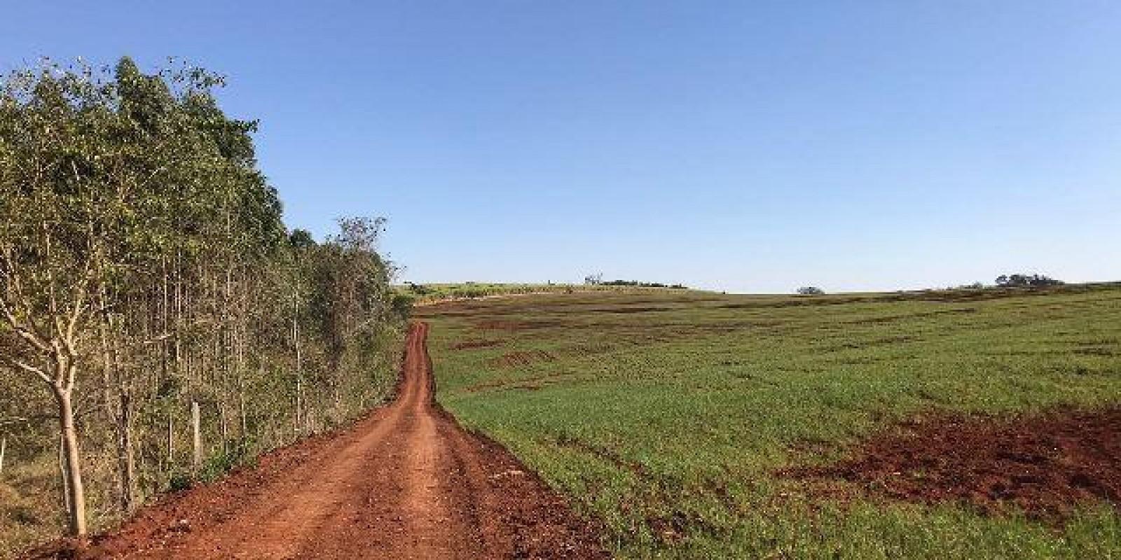 Fazenda de 40 Alqueires, Município de Sarutaiá Sp - Foto 9 de 20