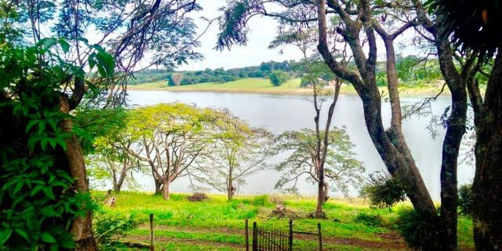 Sítio de 7.1 Alqueires em Arandu SP  - Foto 12 de 21