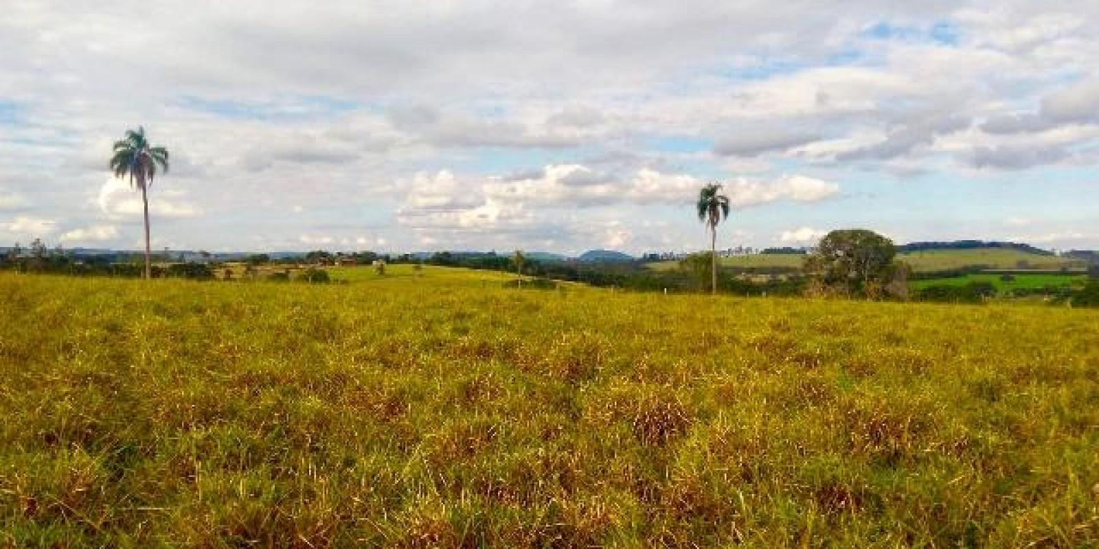 Sítio de 7.1 Alqueires em Arandu SP  - Foto 7 de 21